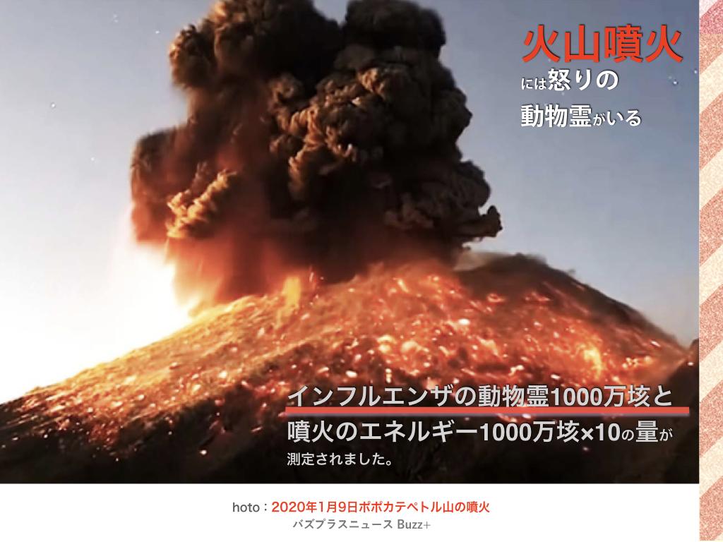 f:id:mirai-hadou:20201209204509j:plain