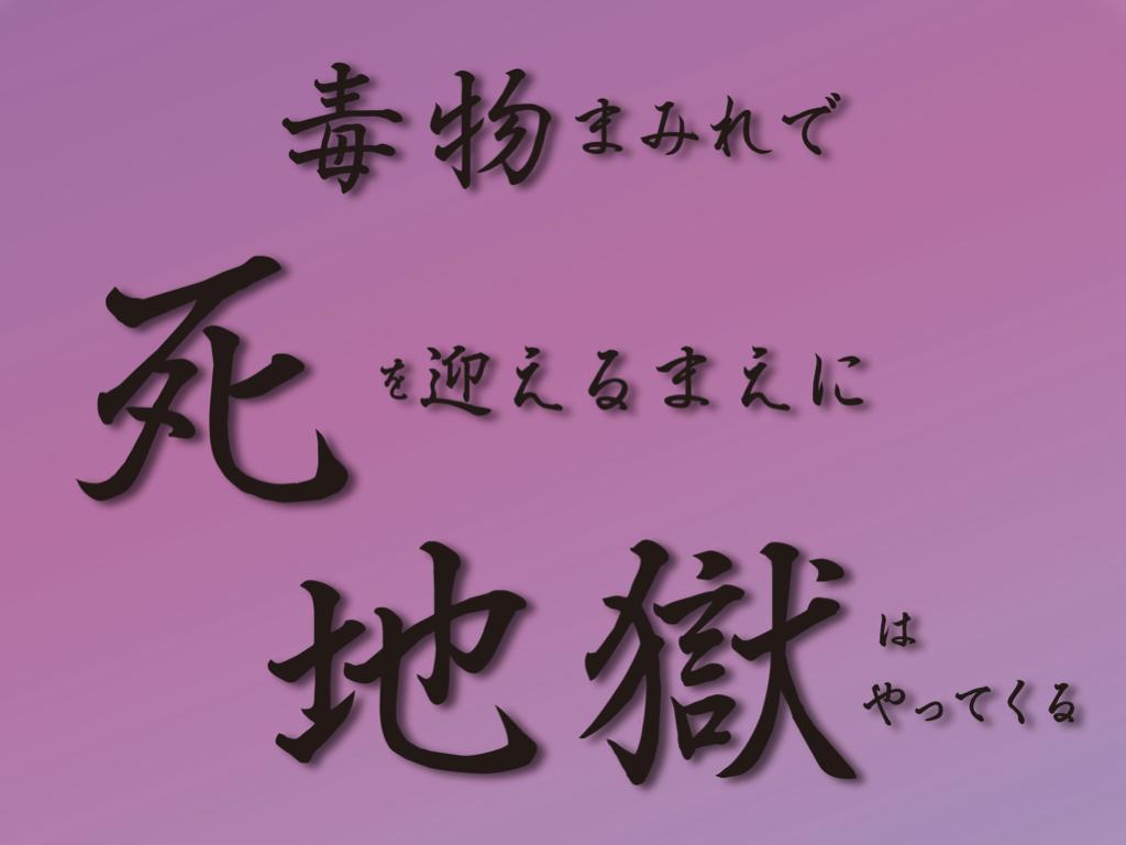 f:id:mirai-hadou:20201224224052j:plain