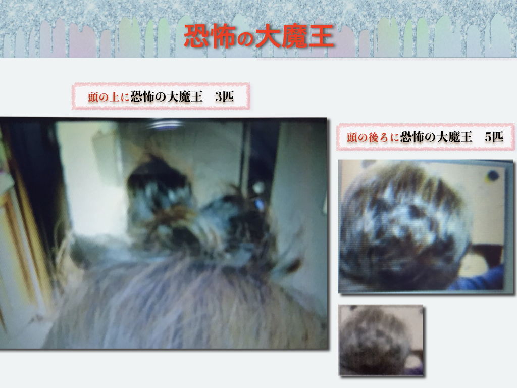 f:id:mirai-hadou:20210115180310j:plain