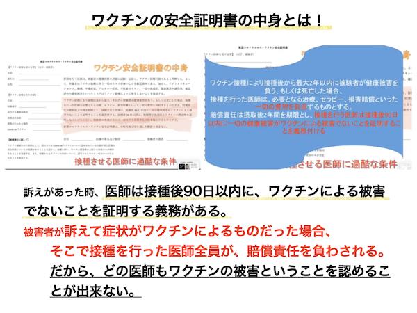 f:id:mirai-hadou:20210514192306j:plain