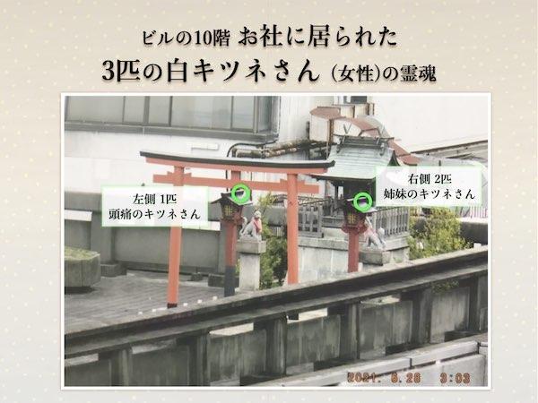 f:id:mirai-hadou:20210705231936j:plain