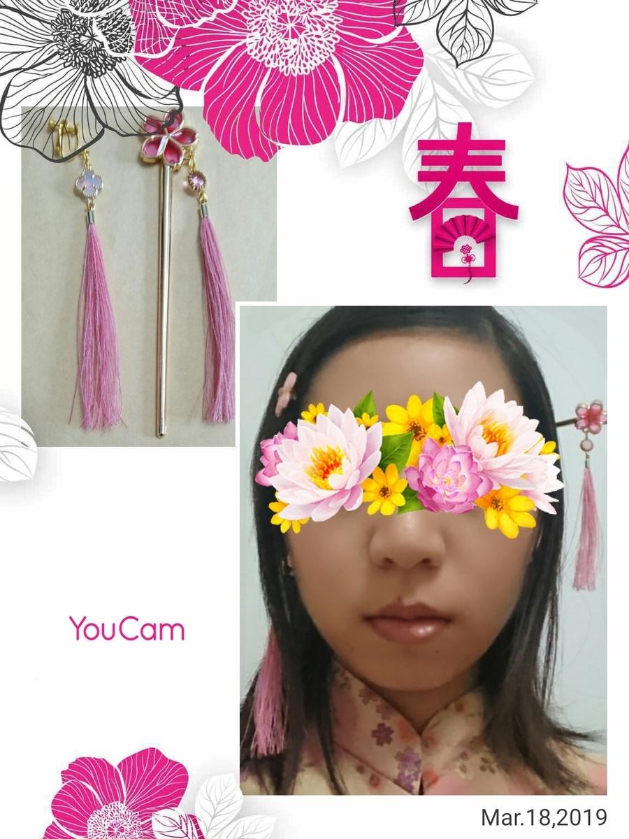 f:id:mirai_kyoushi:20190319225544j:plain