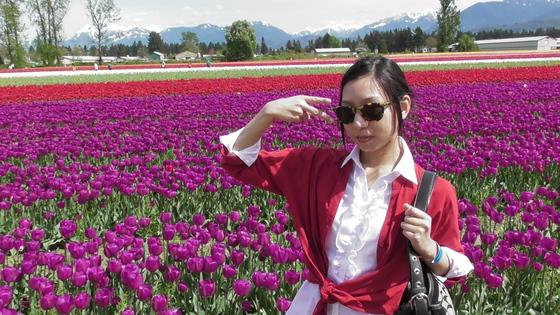 f:id:mirai_kyoushi:20190401224231j:plain