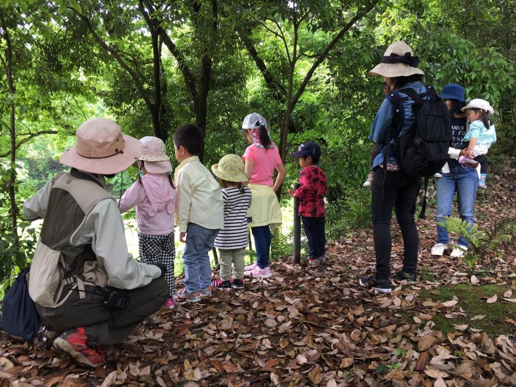 堺自然ふれあいの森イベント 20160507 - 森のようちえん きらめき
