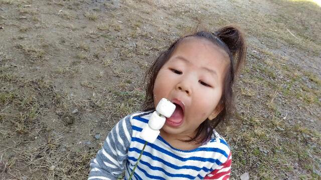 f:id:miraimikiki0201:20161127013035j:plain