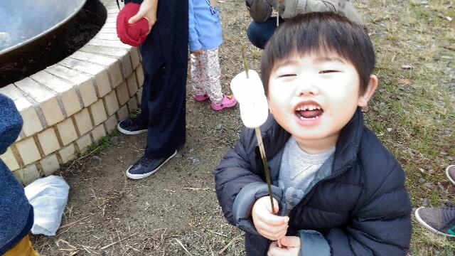 f:id:miraimikiki0201:20161127013114j:plain