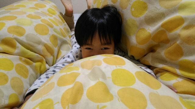 f:id:miraimikiki0201:20170120104422j:image