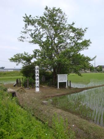 f:id:mirainodaifugoo:20090530115056j:image
