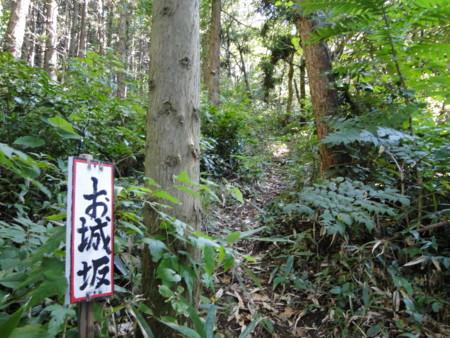 f:id:mirainodaifugoo:20091004093056j:image