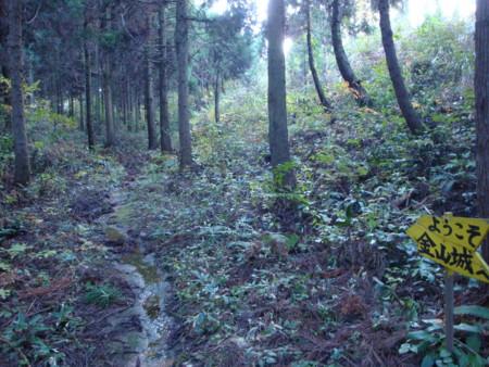 f:id:mirainodaifugoo:20091107153819j:image