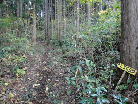 f:id:mirainodaifugoo:20091107154602j:image