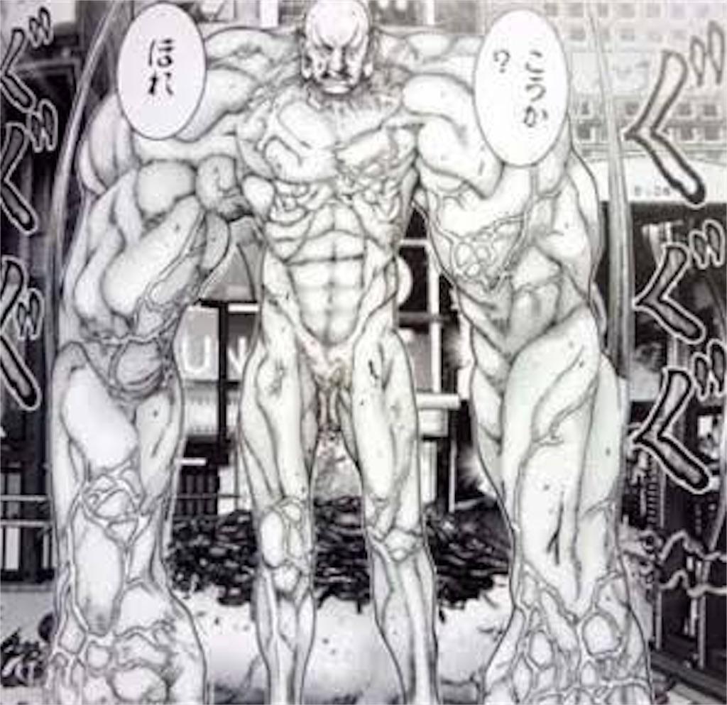 f:id:mirrorcle-suzukix:20161023224339j:image