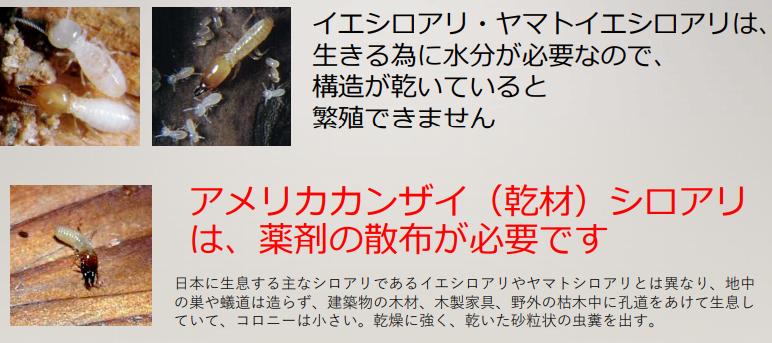 f:id:mirukodesappu:20210505104758p:plain
