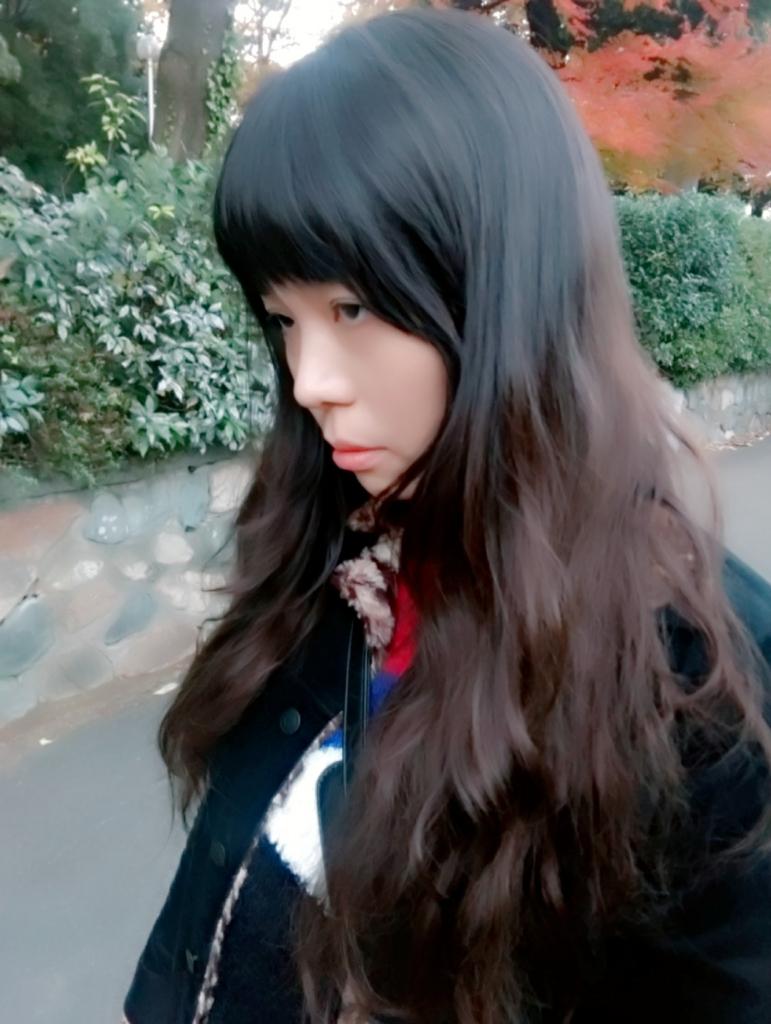 f:id:misa4:20170410021109j:plain
