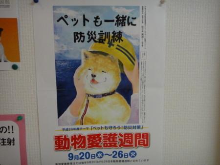 f:id:misaki-ah03:20170913210639j:image
