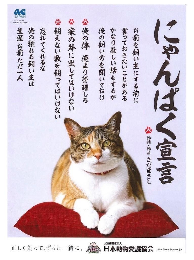 f:id:misaki-ah03:20191104105134j:image