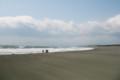 強風の茅ヶ崎海岸