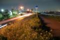 多摩川沿いのサイクリングコース 夜