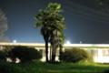 野球場の横の木