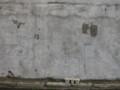 濡れ残った壁