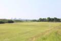 相模川東岸河川敷の芝生