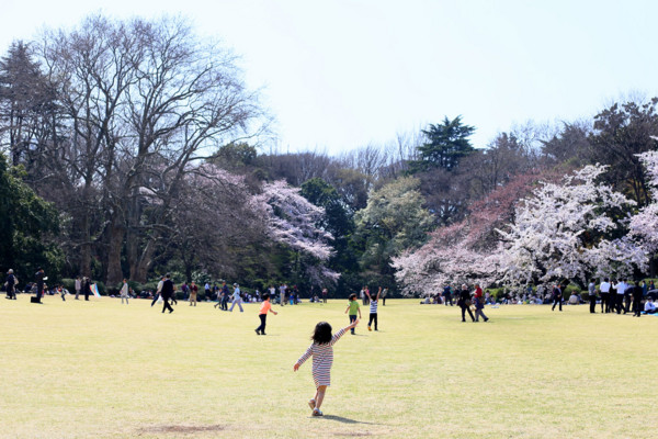 f:id:misaki-taku:20150330204721j:image