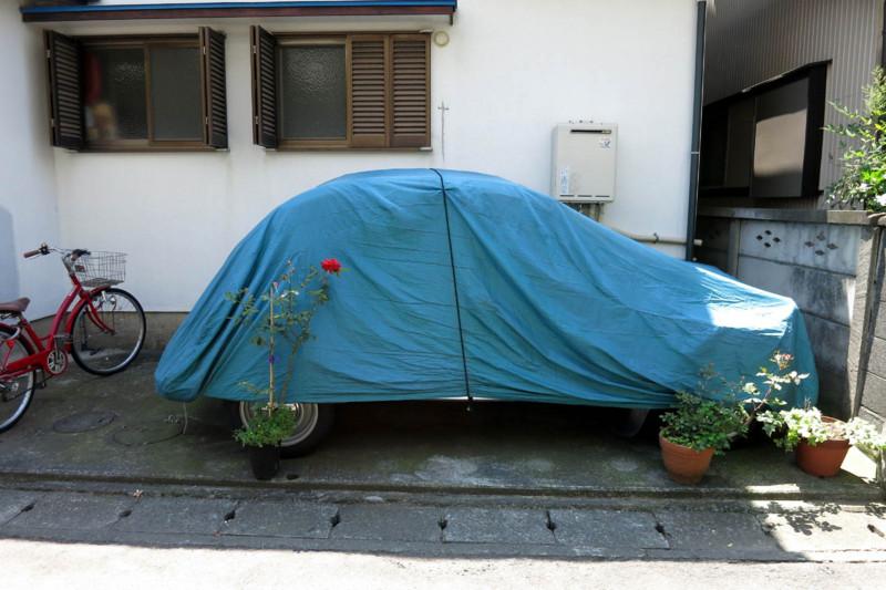 青い車体カバーと赤い花