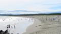 7月上旬の茅ヶ崎西浜