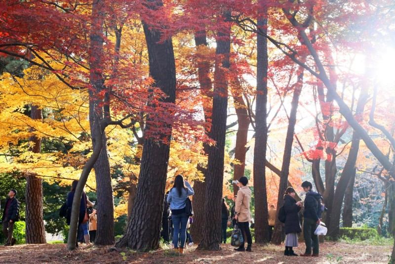 f:id:misaki-taku:20161204125031j:image