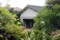 茅ヶ崎館の庭2