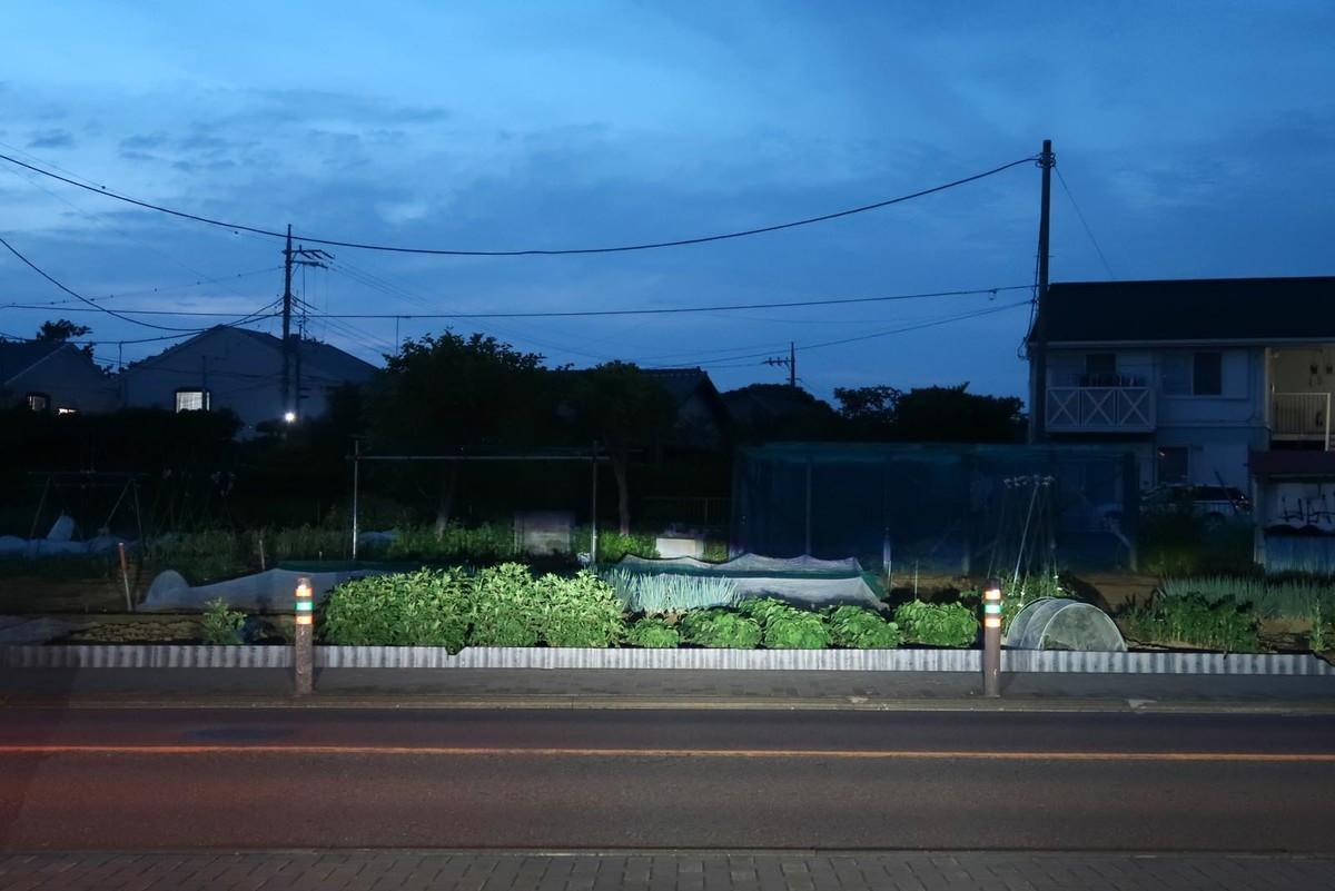 f:id:misaki-taku:20200526204022j:plain