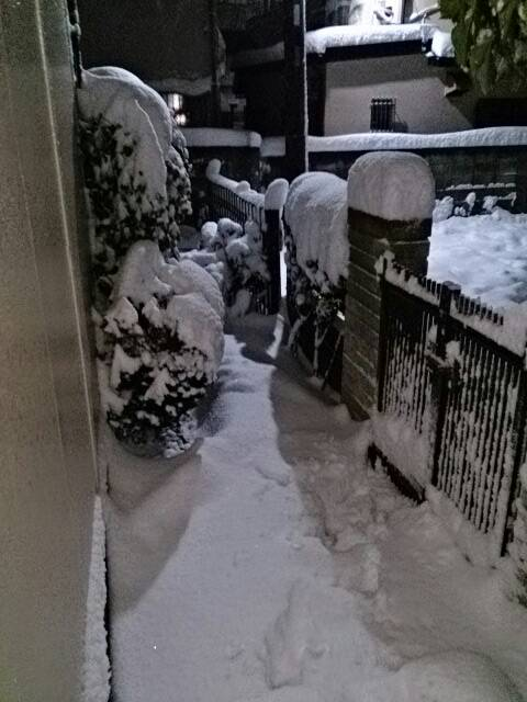 f:id:misaki_hoshino:20180122232638j:plain