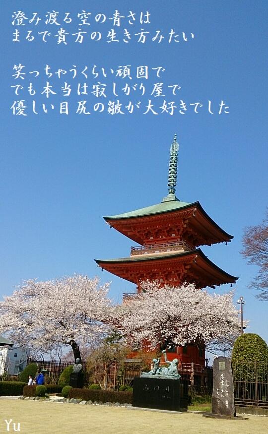 f:id:misaki_hoshino:20180407000626j:plain
