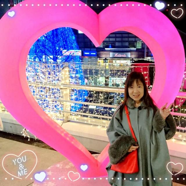 f:id:misaki_hoshino:20190125000501j:plain