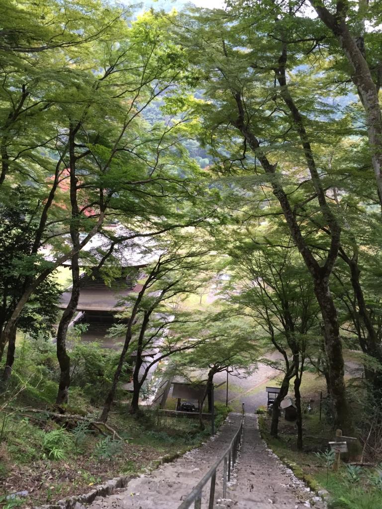 f:id:misakikohama:20151011195607j:plain