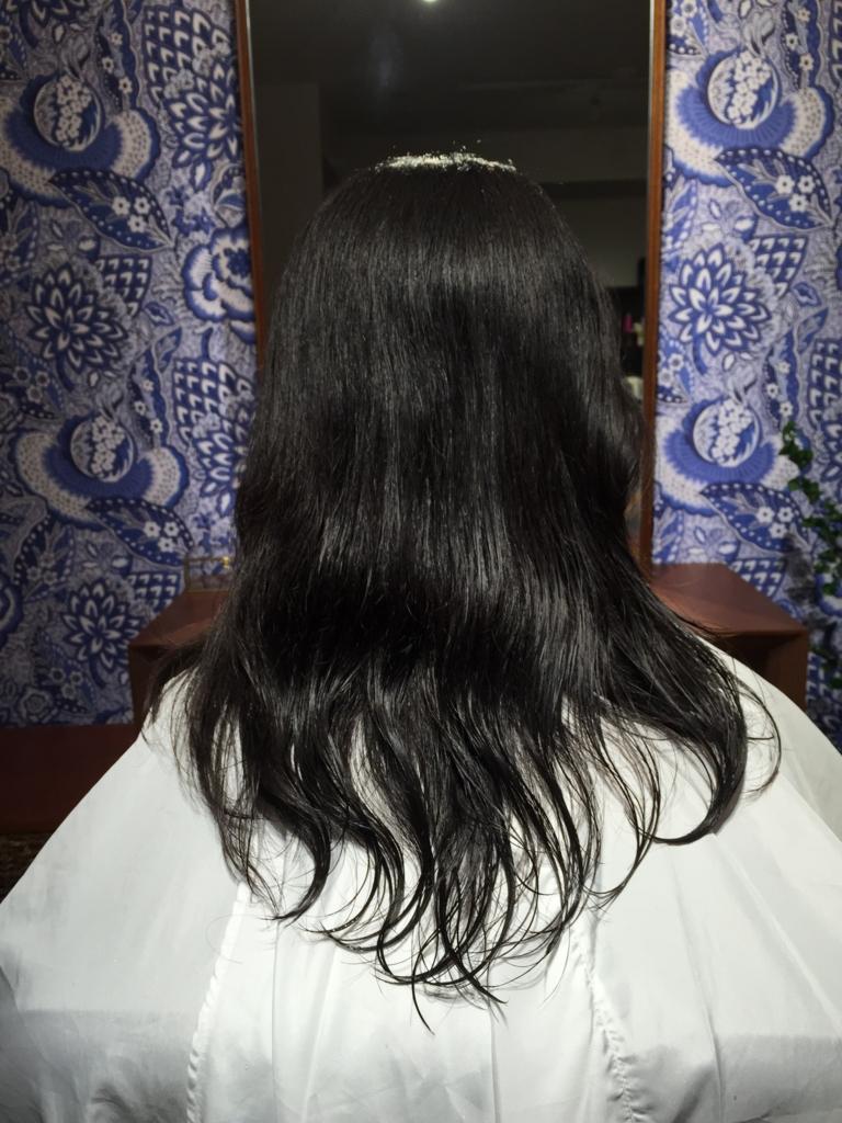 f:id:misakikohama:20160216185814j:plain