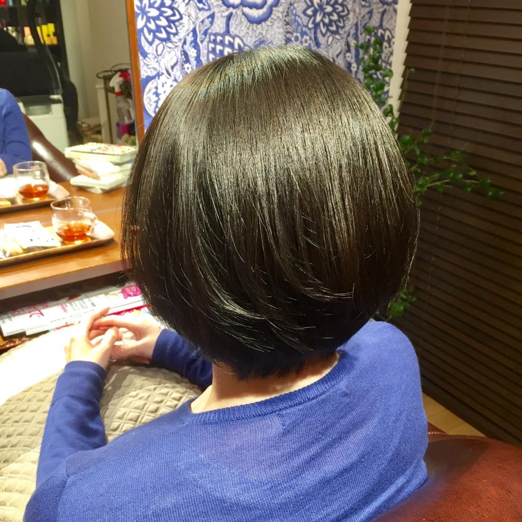 f:id:misakikohama:20170131170713j:plain