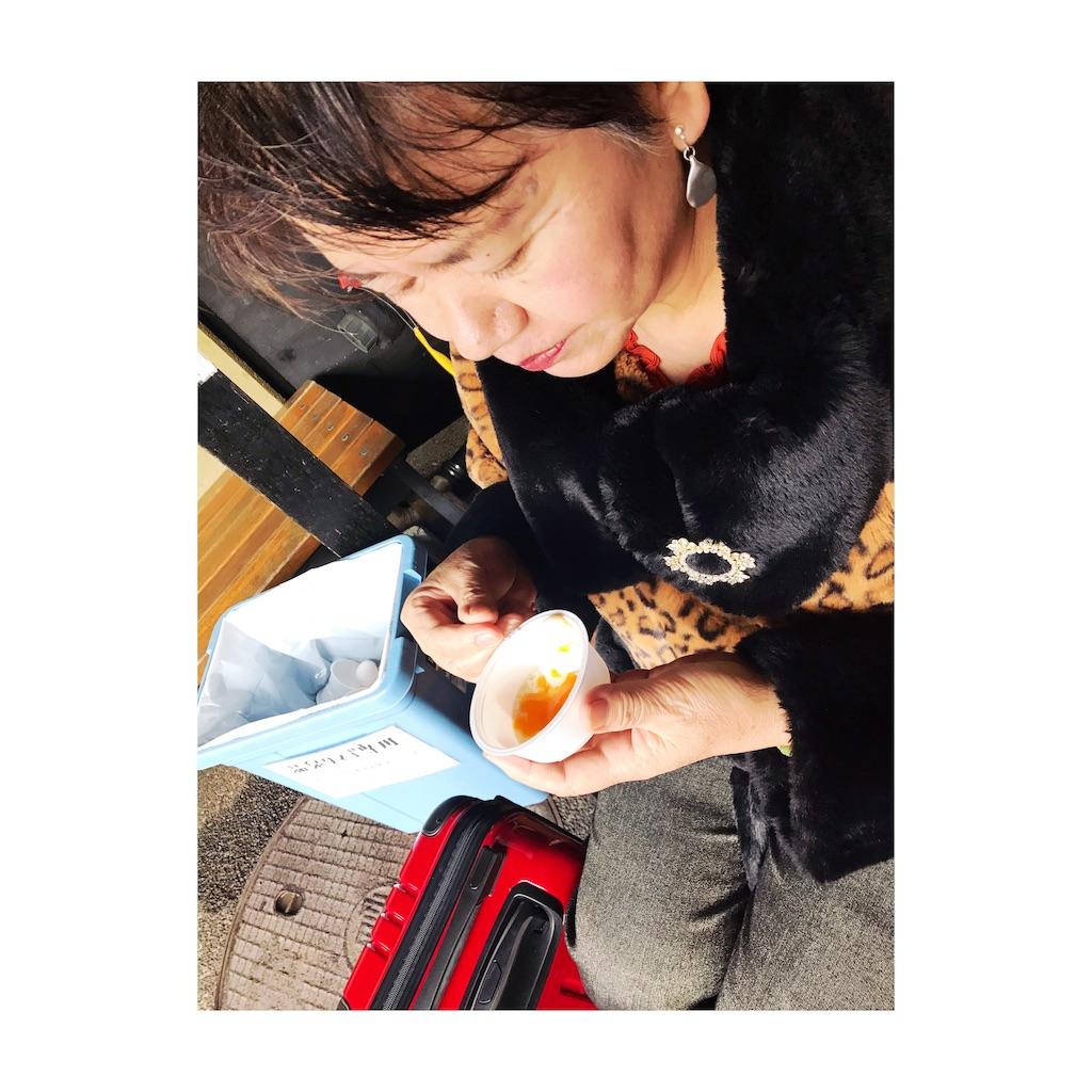 f:id:misakikohama:20190108194222j:image