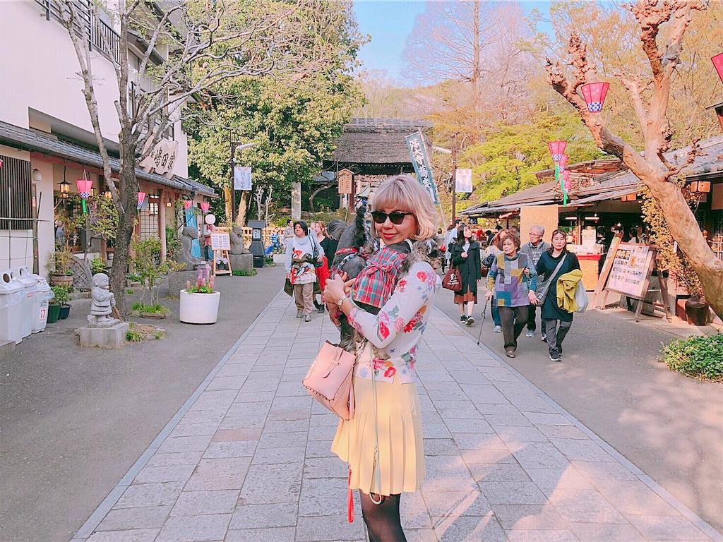 f:id:misakikohama:20190408205943j:image