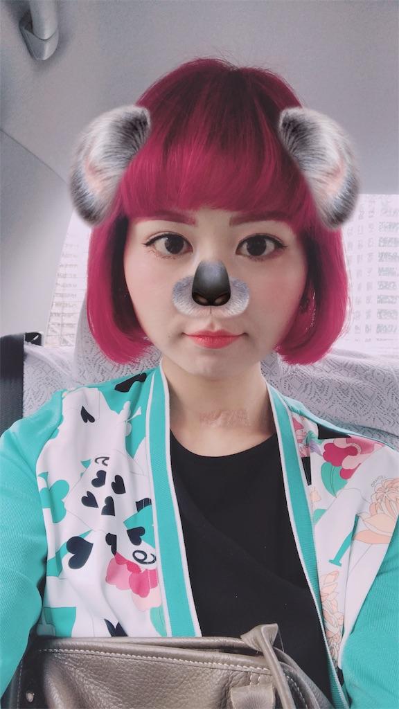 f:id:misakikohama:20190526183816j:image