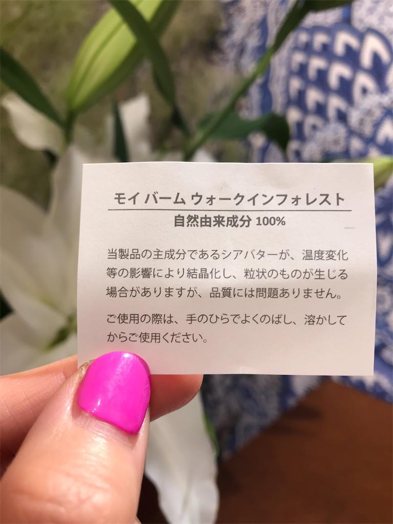 f:id:misakikohama:20190607134630j:image