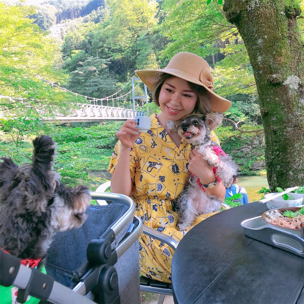 f:id:misakikohama:20190818212443j:image