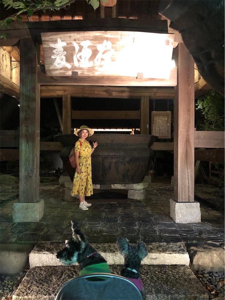 f:id:misakikohama:20191012204354j:image