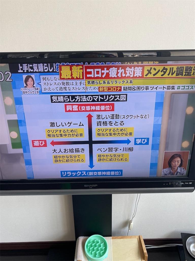 f:id:misakikohama:20200418192107j:image