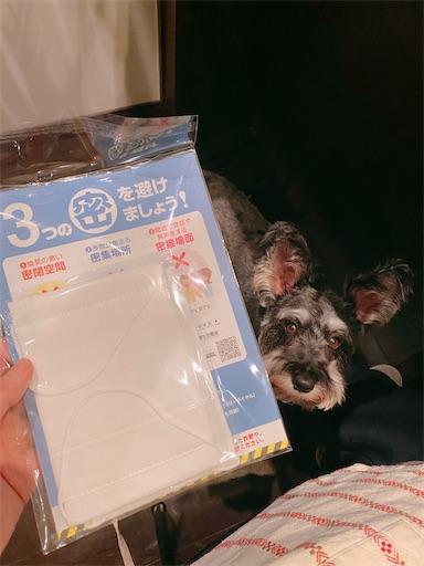 f:id:misakikohama:20200428193852j:image