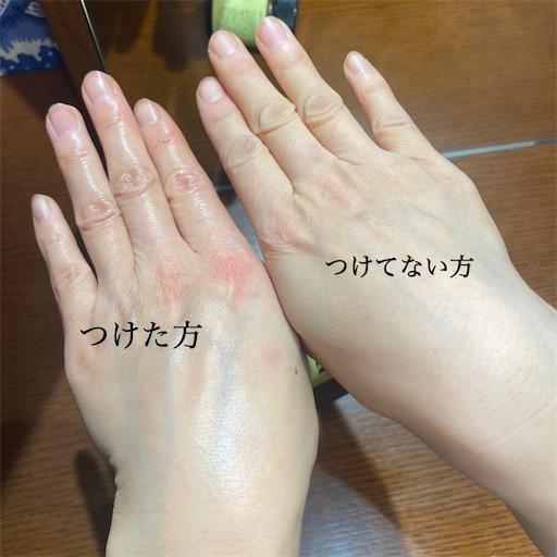 f:id:misakikohama:20210204163755j:image