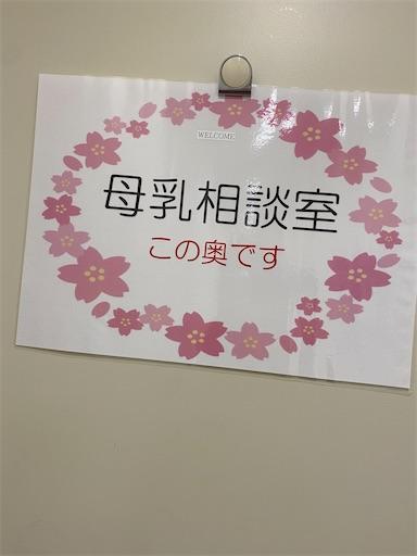 f:id:misakikohama:20210608194158j:image