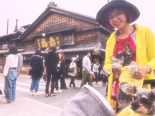 f:id:misakikohama:20210610111541j:image