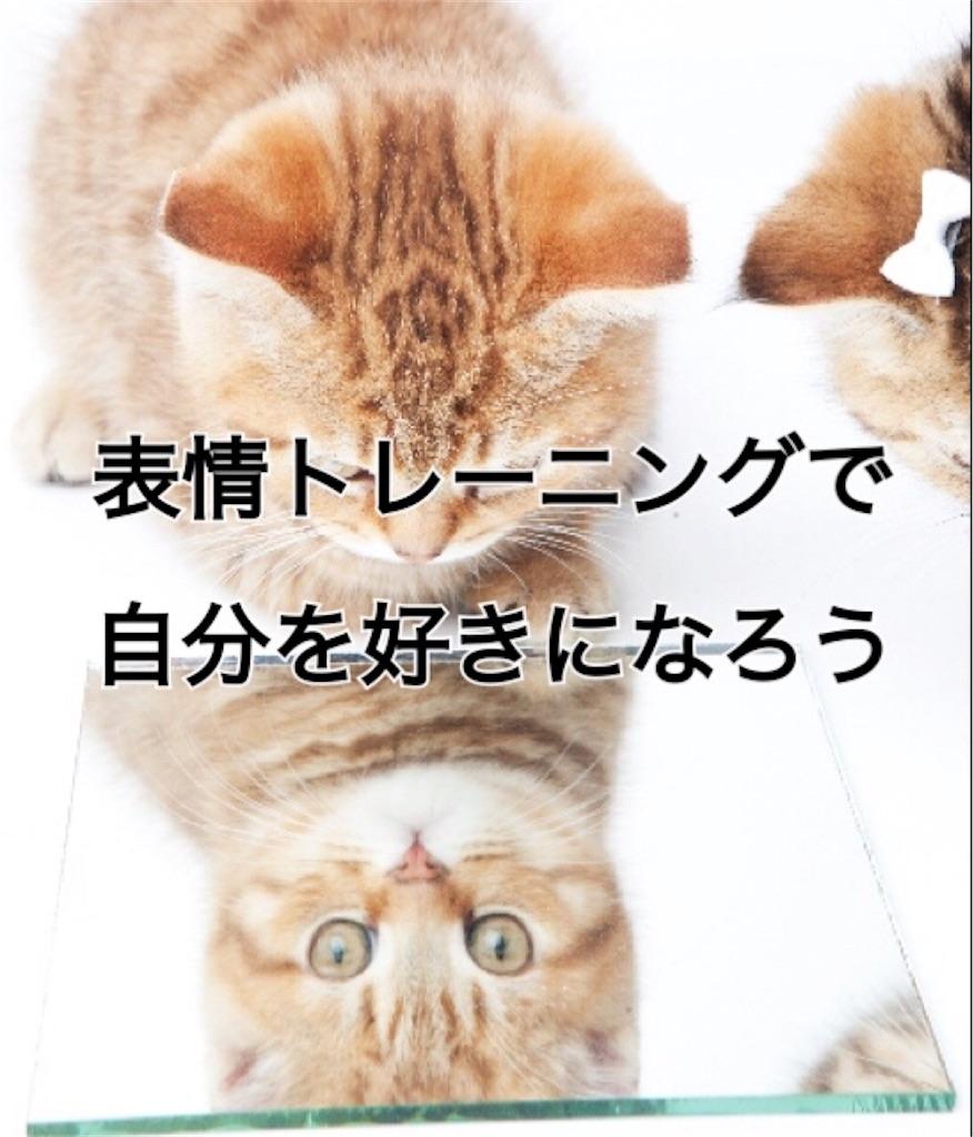 f:id:misakinha:20170224152248j:image