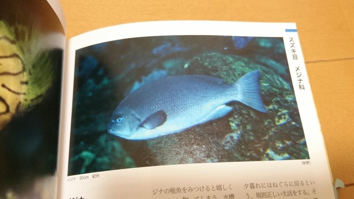 f:id:misakiyamaguchi:20200520225624j:plain